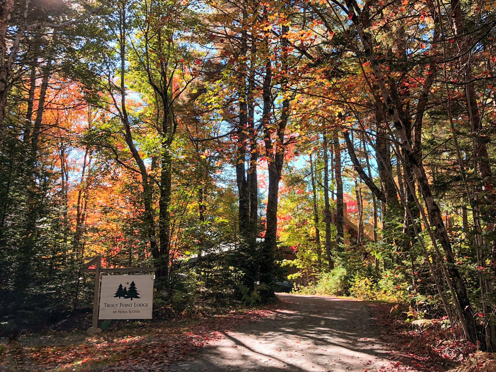 Experiencing fall foliage on a road trip to Trout Point Lodge in Kemptville, Nova Scotia