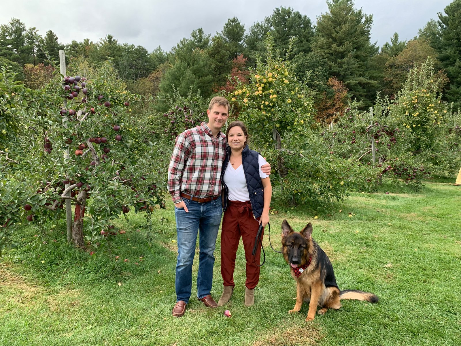 a family apple picking with their dog at an apple orchard in New Engalnd