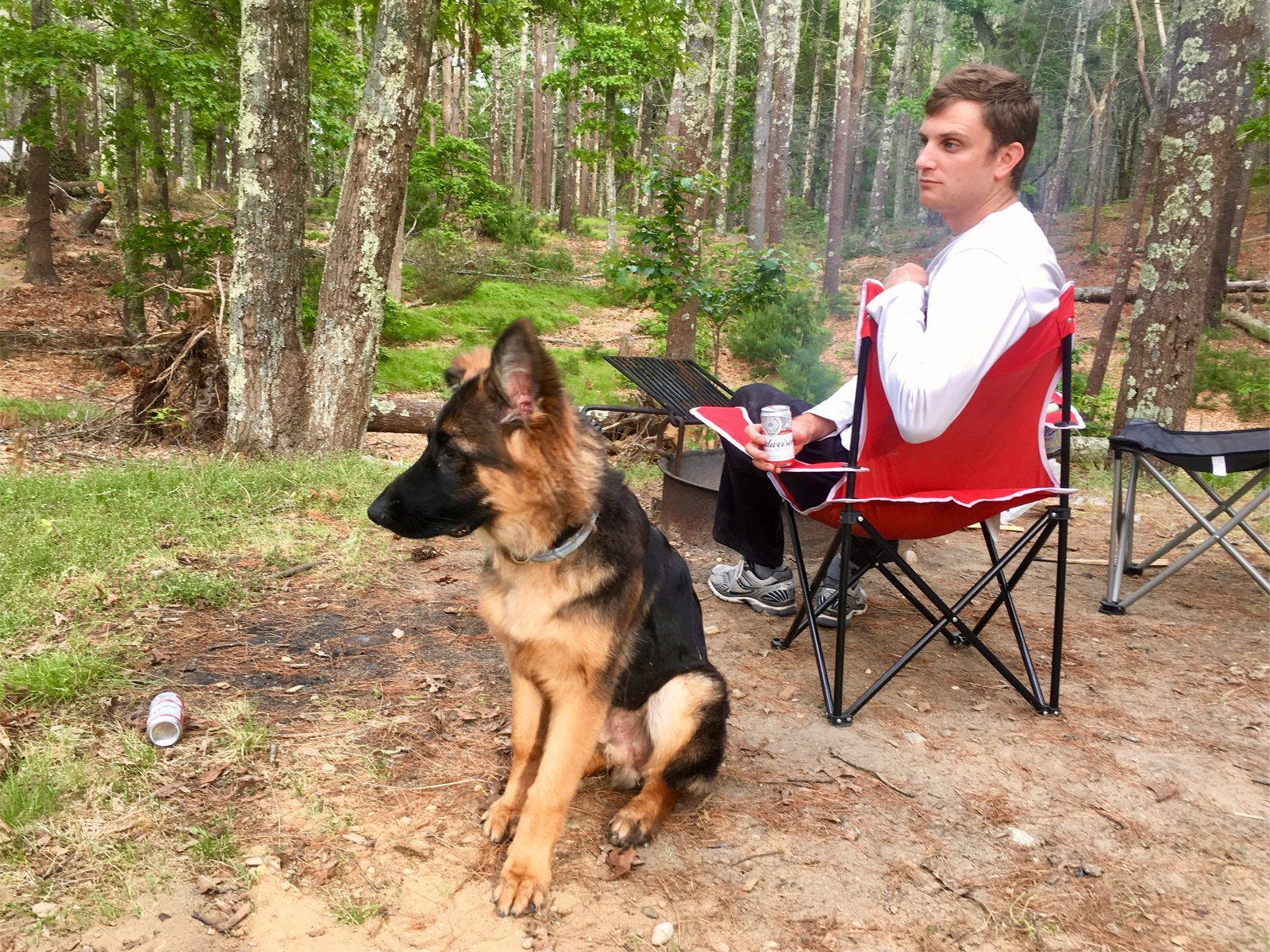 Camping with a dog at Nickerson State Park in Cape Cod, Massachusetts