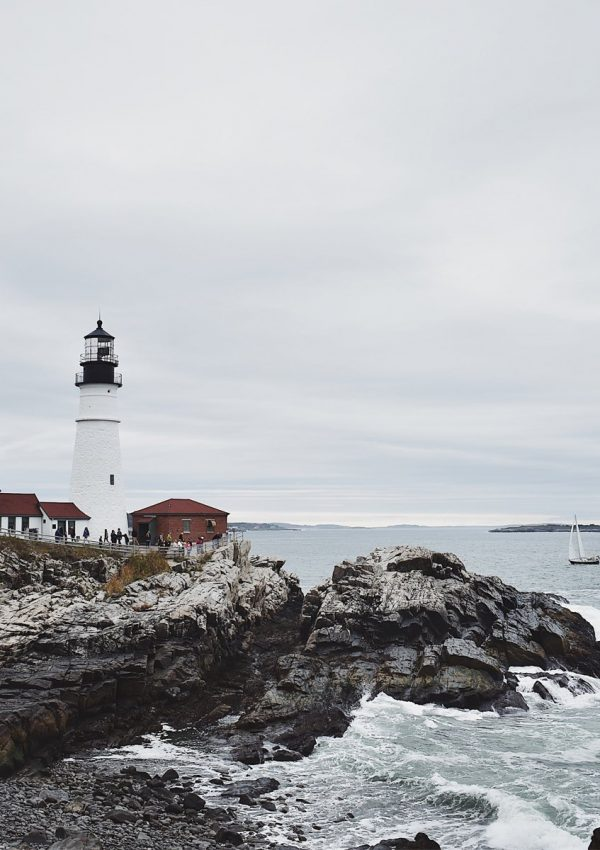 Dog-Friendly Guide to Cape Elizabeth, Maine