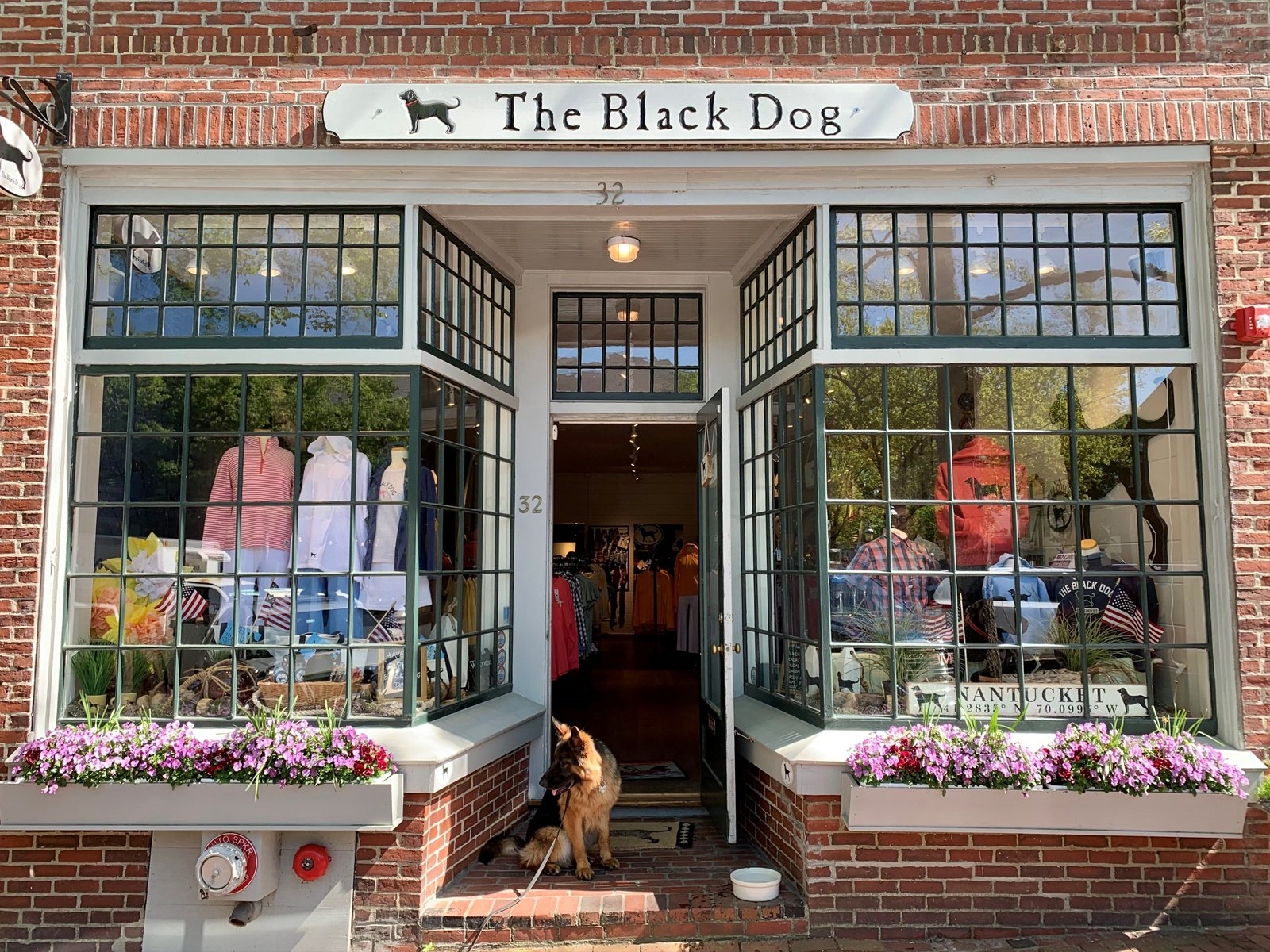 dog sitting outside the Black Dog store in downtown Nantucket