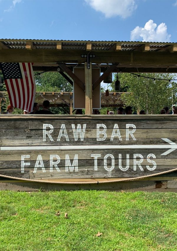 Raw Bar at Island Creek Oyster Farm in Duxbury, Massachusetts