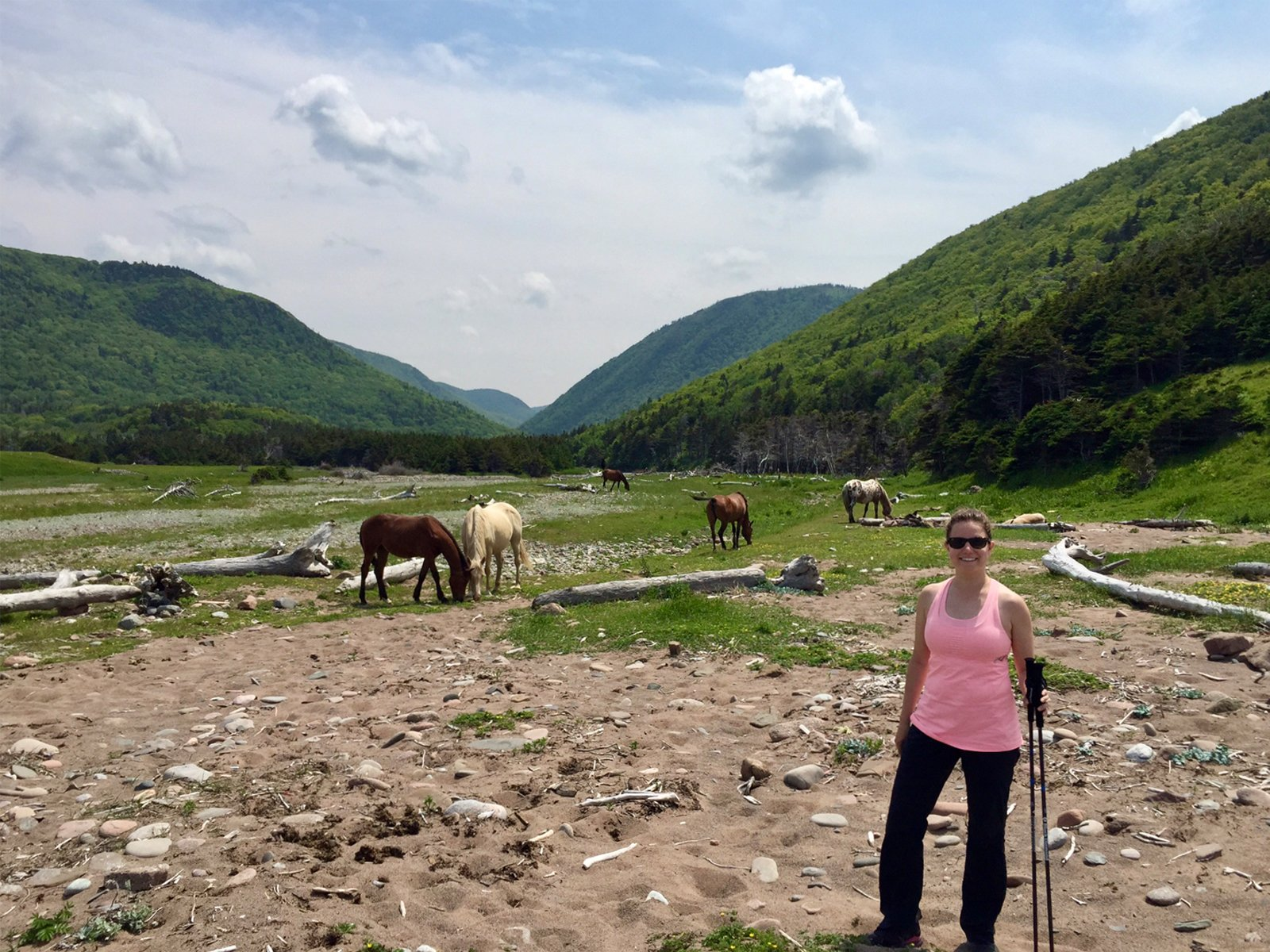 hiker standing next to wild horses in Pollets Cove, Cape Breton Island, Nova Scotia
