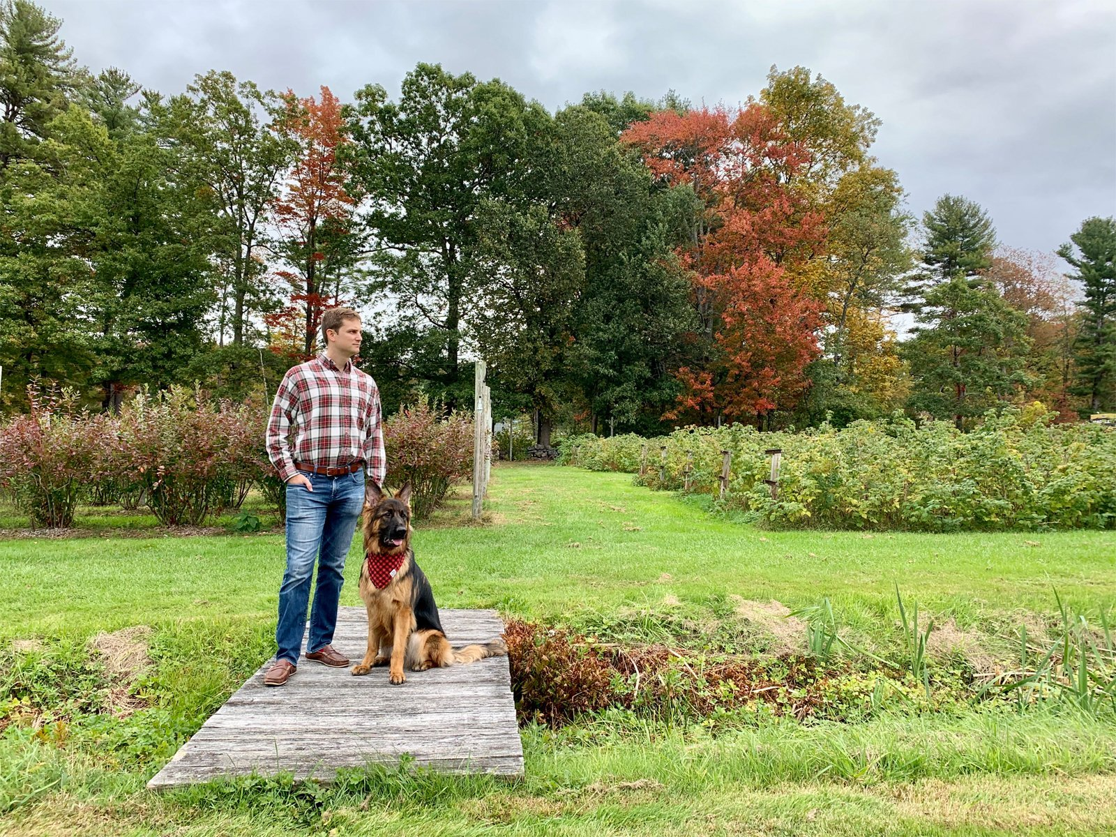 man and dog in an apple orchard in fall