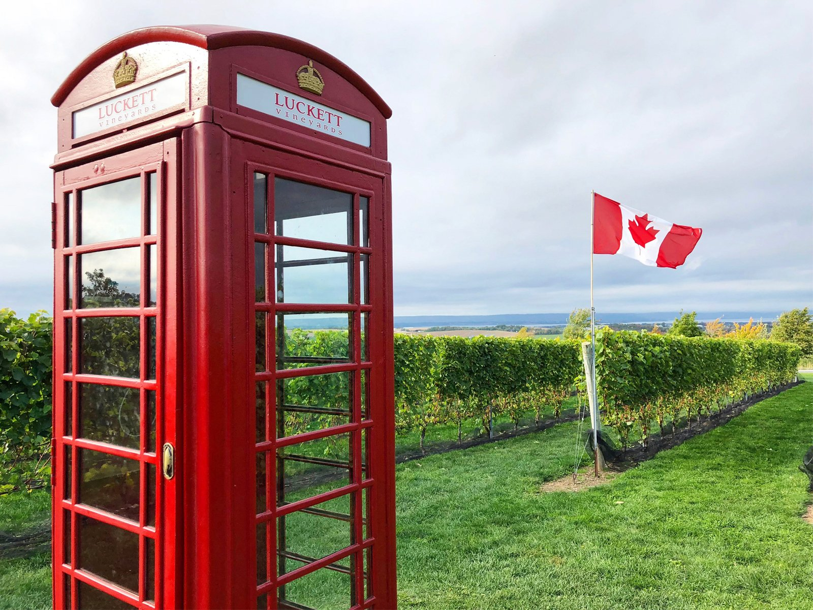 the red phone booth at luckett vineyards in Wolfville, Nova Scotia