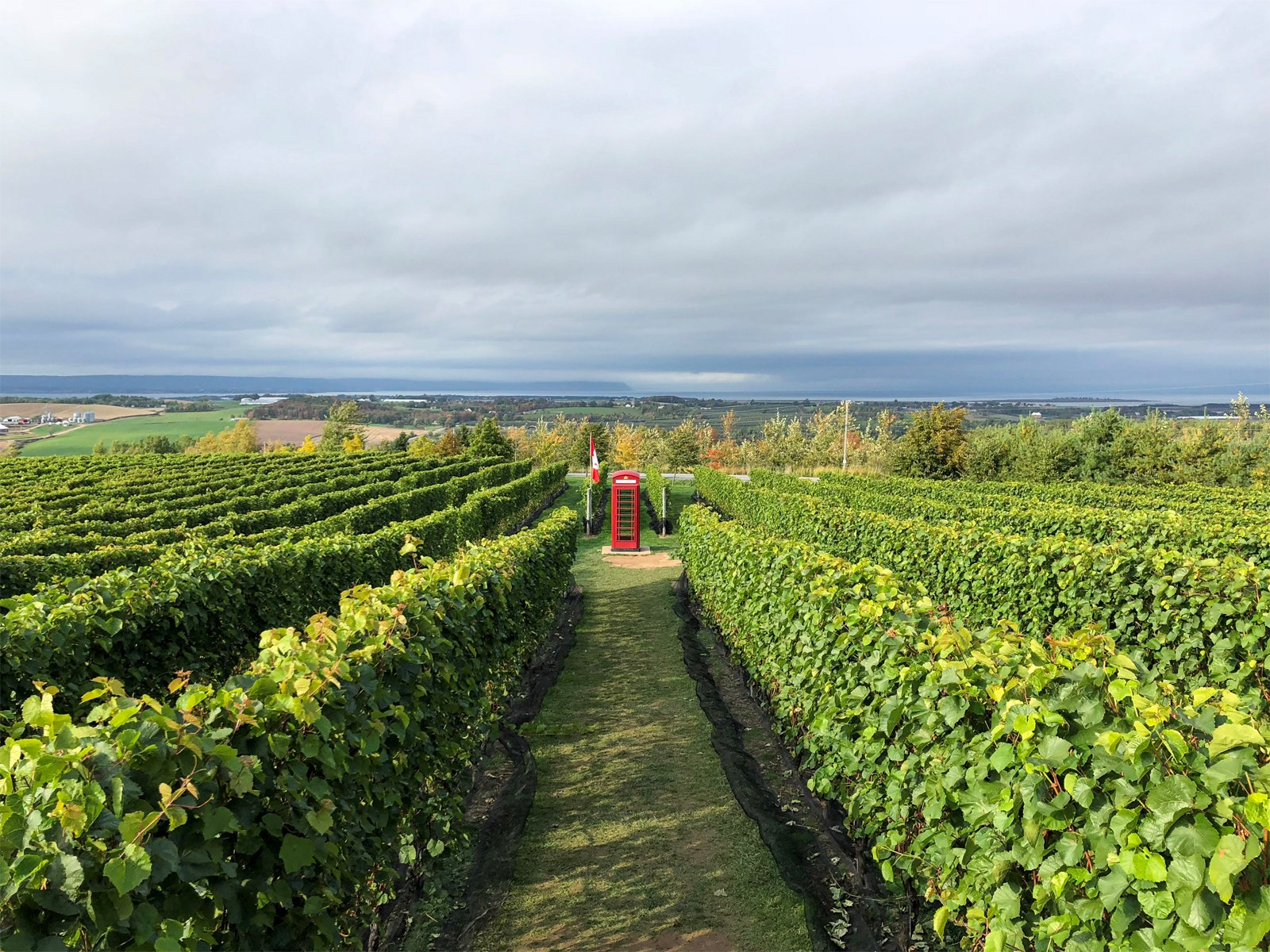 luckett vineyards in Wolfville, Nova Scotia