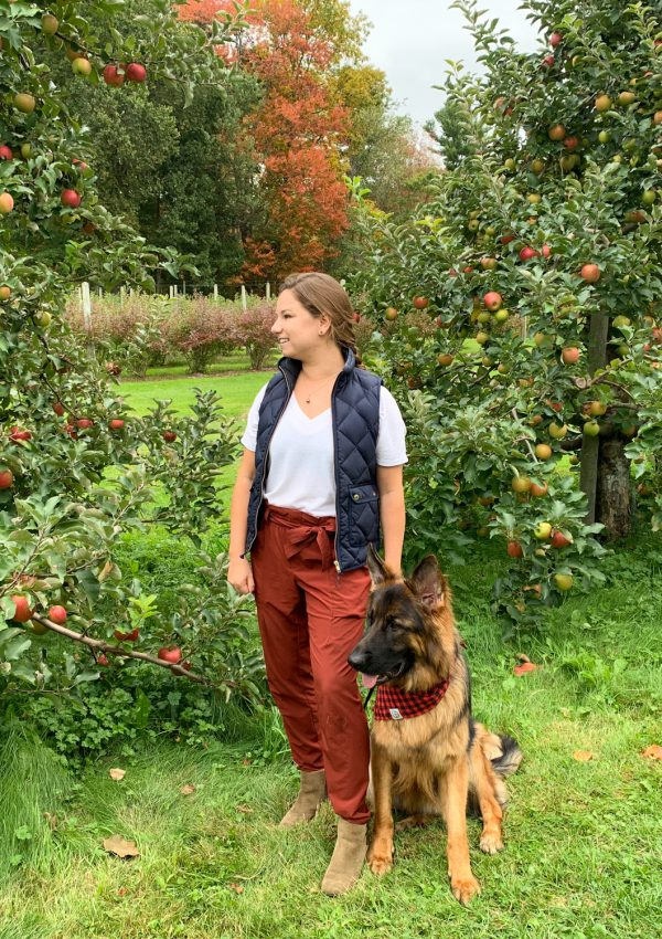 Dog-Friendly Apple Picking at Doe Orchards