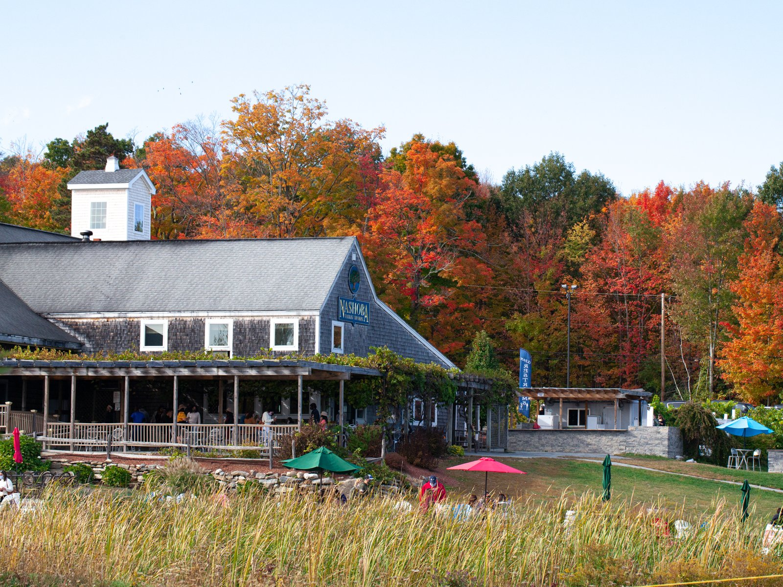 the restaurant and winery at Nashoba Valley Winery offers dog friendly apple picking
