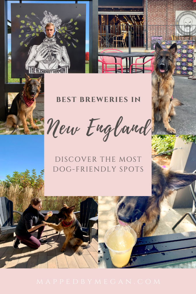 Discover the most dog friendly breweries in New England.