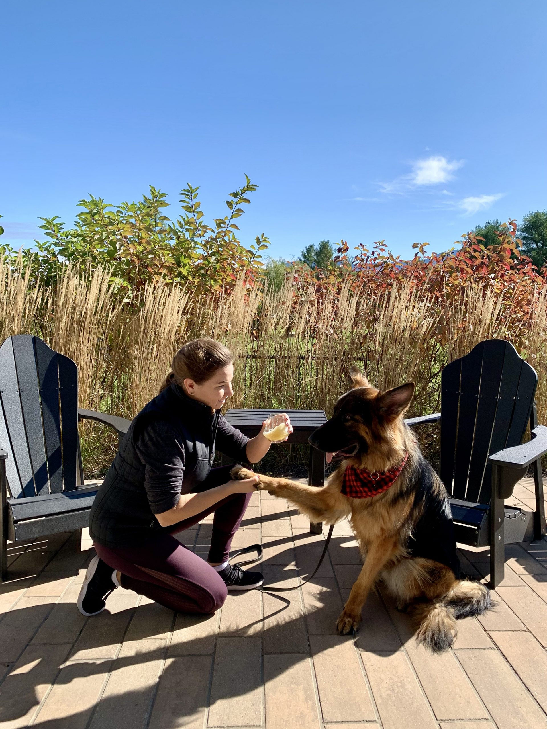a girl with a beer shaking hands with a dog at Alchemist Brewery in Stowe, VT
