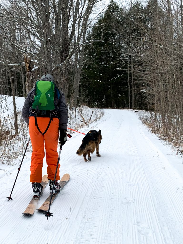 a man cross country skiing with his dog on the dog friendly trails at Woodstock Inn and Resort Nordic Center in Vermont